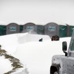 An eskimo in the yard